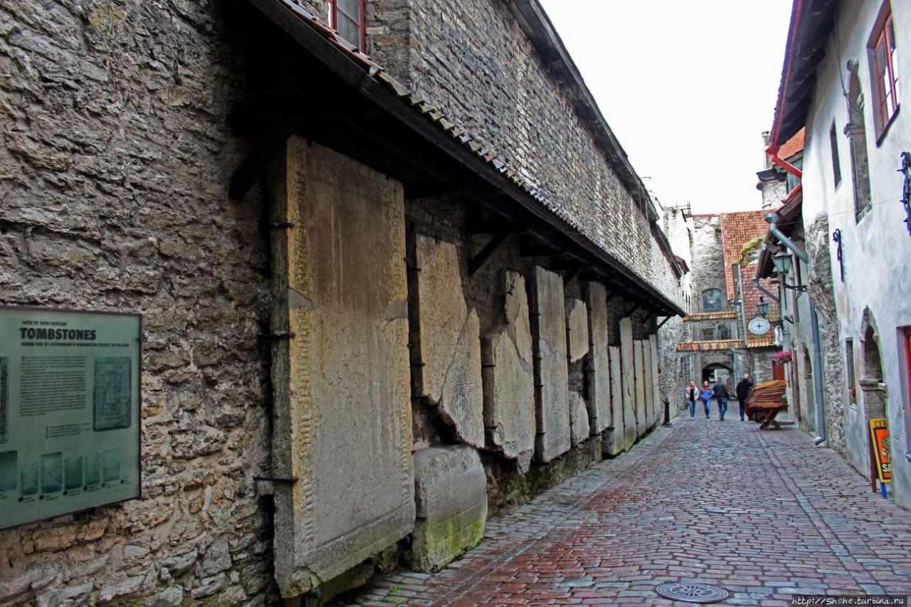 Исторический центр города Таллин Таллин, Эстония